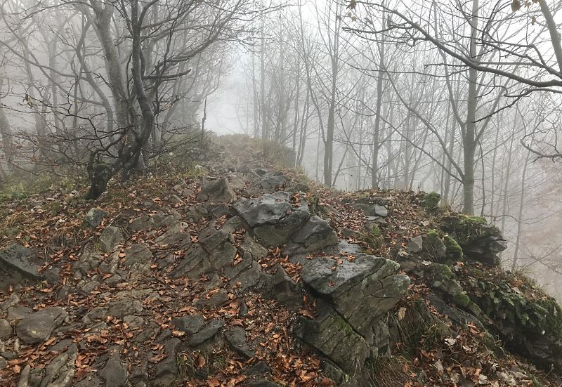 droga w strone osadzkiego wierchu 1