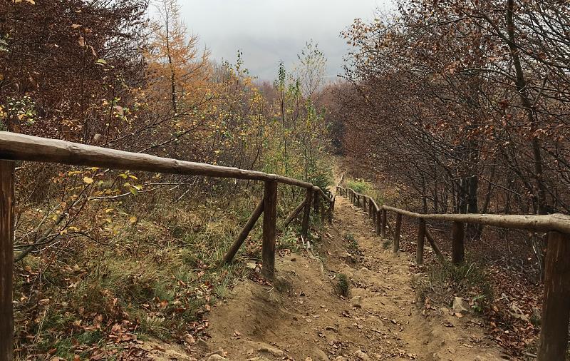 z chatki puchatka do brzegow gornych 3 bieszczady jesienia