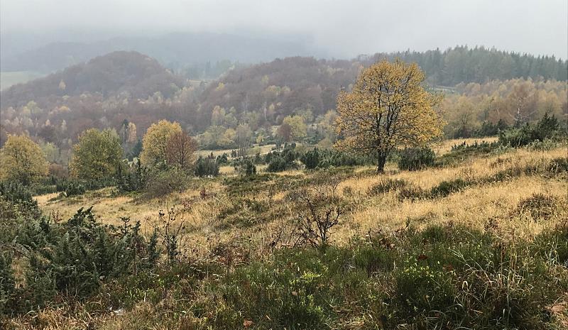 z chatki puchatka do brzegow gornych 4 bieszczady jesienia